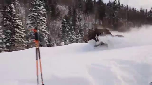 site de rencontres skieurs