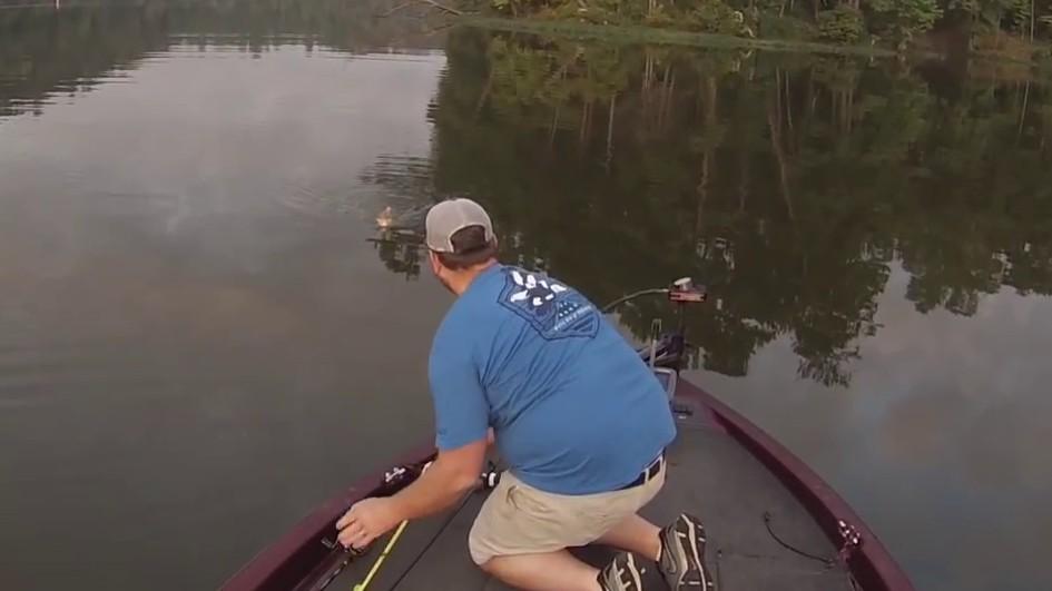 La pêche des braconniers de vidéo